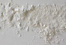 San Jose drywall mold removal